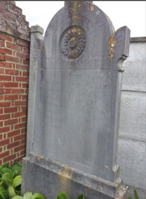 sepulture hiot
